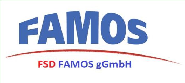 FSD FAMOS